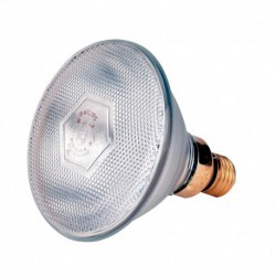 Lamp 100 W wit Philips spaar