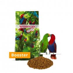 Wisbroek Parrot Fruit Blend Booster 10kg