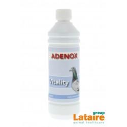 Adenox