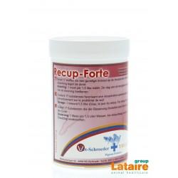 Recup Forte (recuperatie) 300gr