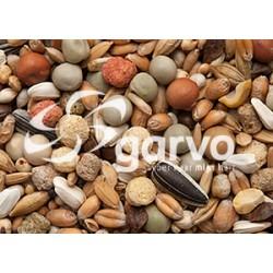 962 Kroppervoer zonder mais en milo 20kg