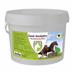 Sweet Eucalypta Blocks 3kg