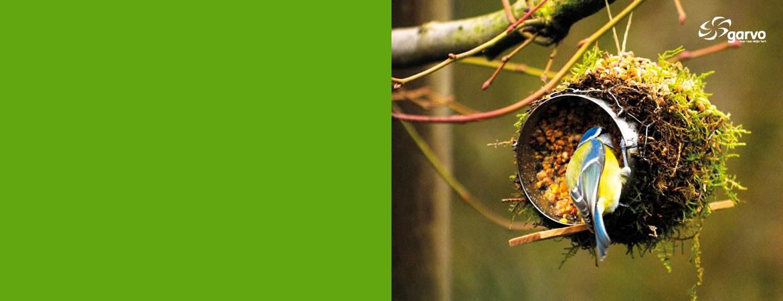 bos- en tuindieren