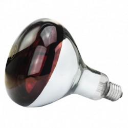 Lamp 250 W infrarood Hard Glas
