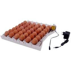 Automatisch keersysteem voor 42 eieren 12 VAC met adapter