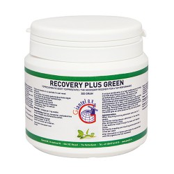 Recovery Plus Green 300gr