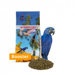 Wisbroek Parrot Nut Blend Booster 10kg
