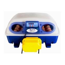 Automatische broedmachine real 24 Borroto
