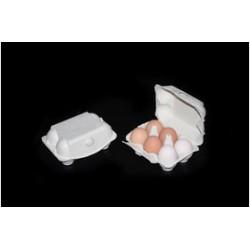 Eierdoos 6 stuks voor grote eieren en eendeneieren