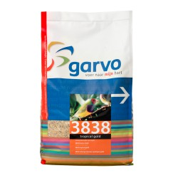 383840 Tropical gold 4kg
