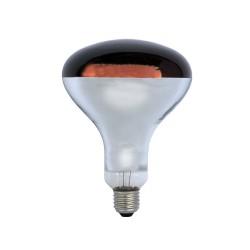 Warmtelamp Powerheat, infra rood, 250Watt, 240V, R125, E-27
