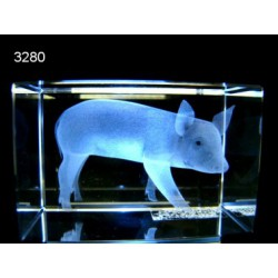 3D glasblokje Varkentje