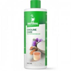 Choline Care 500 ml
