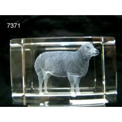 3D glasblokje met schaap