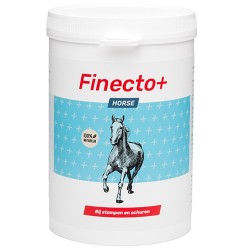 6 x Finecto+ Horse 600gr (10% korting)
