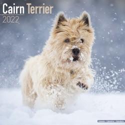 Kalender Cairn Terrier 2022