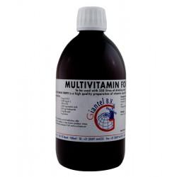 Multivitamin Forte Giantel 500ml