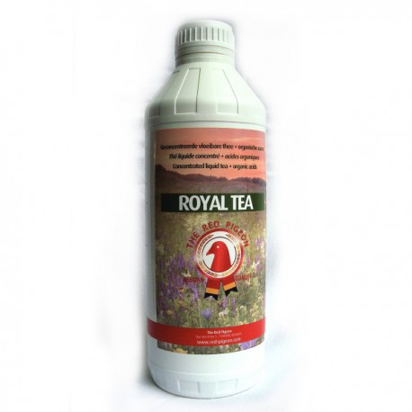 RED PIGEON - Royal Tea (vloeibare thee + kruiden, zuren en etherische oliën)
