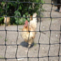 Vogelnet 6m breedte