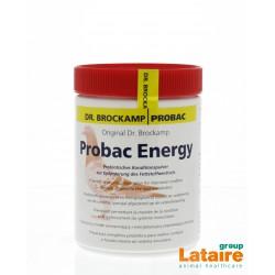 Probac Energy (energie, immuunsysteem) 500gr