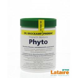 Phyto (vochtbalans maag-darm, mest) 500gr