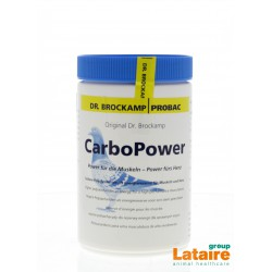 Carbo Power (spieren) 500gr