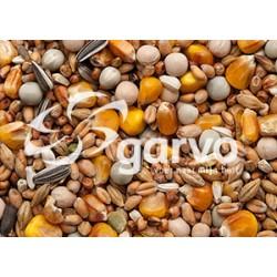 1810Rui / Rust 20kg