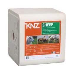 4203 KNZ liksteen schaap/stk 10kg