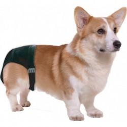 Dog Pant (Loopsheidbroekje) size 2